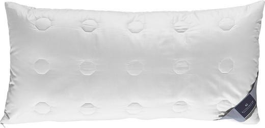 INNENKISSEN  40/80 cm - Champagner, Basics, Textil (40/80cm) - Billerbeck