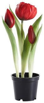 KUNSTBLUME Tulpe - Rot/Grün, Basics, Kunststoff/Metall (25cm)